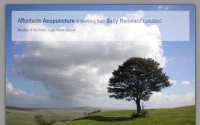 Affordable Acupuncture Worthing - website design from A Clear Web Worthing